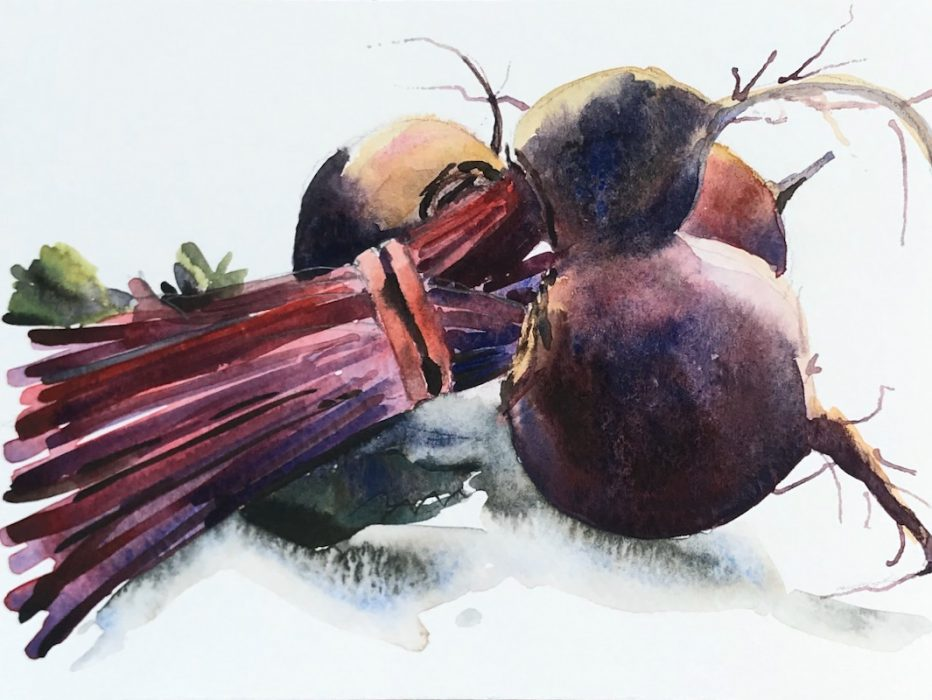 BEETROOT STUDY 12x15cms 2019 Sunday Times Watercolour Competition