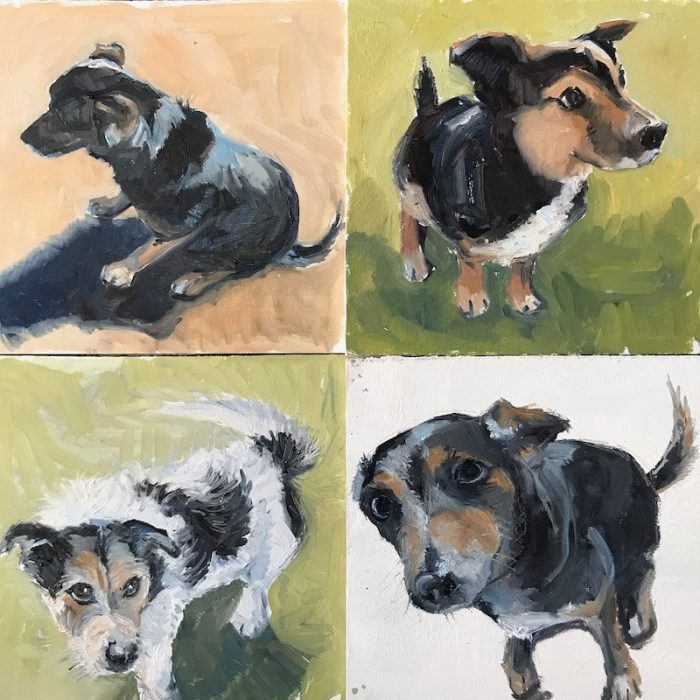 Dog Sketches 2020 20x20cms