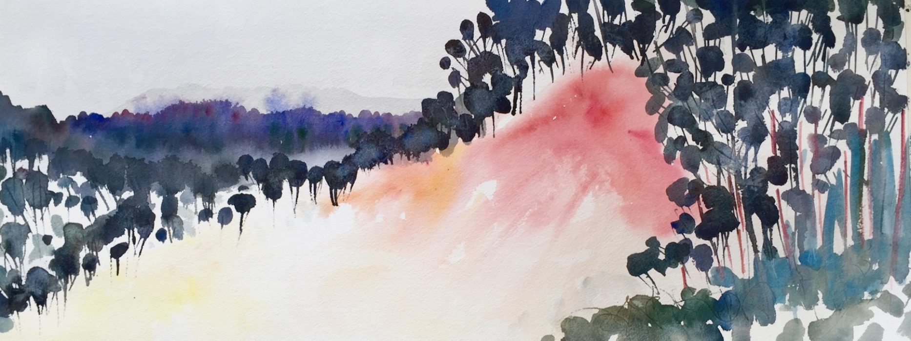 Fog out of the Trees, Cantabria Spain 2019 30x60cms