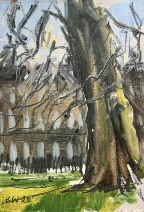 Plane Tree; The Circus Bath 15x10cms